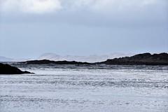 Morar 25 October 2017 033 (paul_appleyard) Tags: morar sand beach lochaber silver scotland october 2017 water empty