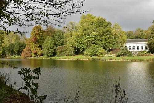 L'Orangerie et la nature luxuriante