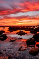 Sunset, Asilomar (Rod Heywood) Tags: asilomarstatebeach asilomar monterey montereypeninsula pacificgrove pacific ocean coast tidepools beach sunset red colorful reflections rocks orange clouds california pacificcoast