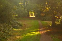 Light on a Path (Dave Roberts3) Tags: coedmelyn park gwent wales newport autumn fall shadows shade path walk