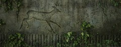 Zoo Wall