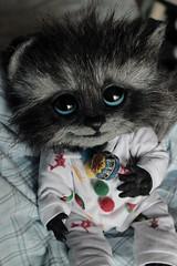 Willow ♥ (Loony-Doll) Tags: monkeybusinesstoys art doll plush artplush raccoon baby babyraccoon ooak ratonlaveur artdoll