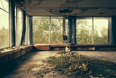 Best seat in the house (Camera_Shy.) Tags: derelict abandoned office block industrial building exploration urban disused decay exploring ue rotten atmosphere plants overgrown urbex uk north west decayed tresspassing nikon d810 vsco