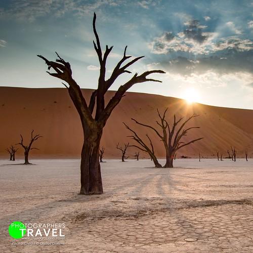 Deadvlei Namibia 2013