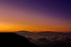 Across the Clouds to Kona (wrachele) Tags: haleakala sunrise flowers sigma purple mala maui d7100 hawaii orange clouds