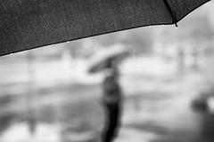Wet (frank.gronau) Tags: tiefenschärfe unscharf wien 7 sony alpha black white weis schwarz raining rain umbrella regenschirm regen nass wet woman girl gronau frank