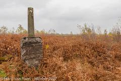 Grenspaal Aamsveen - Border pole Aamsveen (mark van veen) Tags: luc overijssel grenspaal landschap hdr adelaarsvaren nordrheinwestfalen groothoek aamsveen bewolkt grens boderpole provincie herfst