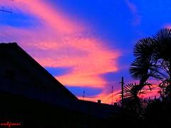 cielotorinese2 (archgionni) Tags: trees sunset sky tetti roofs case homes foglie leaves blu blue nuvole clouds arancione orange effetti effects smog christiangroup