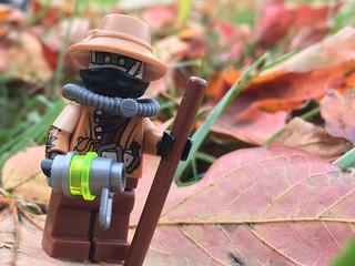 Scarecrow: The Harvest