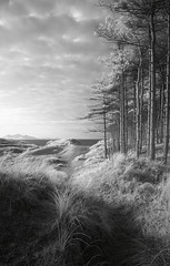 Afar (vuzephotography.co.uk) Tags: infrared anglesey wales