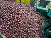 That is a big pile of onions (debra booth) Tags: 2017 grandbazaar india pondicherry pudicherry puducherry copyrighted wwwdebraboothcom
