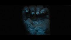 Munich (kkonti2000) Tags: 2017 cinematic gorilla munich mã¼nchen tierparkhellabrunn cinematiclook cinematography classicecn2cinestill800t cinestill800t