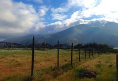 Los campos de Pedegua (Cinthya Cossio) Tags: cloud landscape outdoor pedegua primavera septiembre chile campo