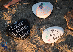 Gulf Beach Kindness Rocks project 2 (Singing With Light) Tags: 2017alpha6500 23rd gulfbeach milford mirrorless singingwithlight sonya6500 colorful photography september singingwithlightphotography sony sunrise walnutbeach