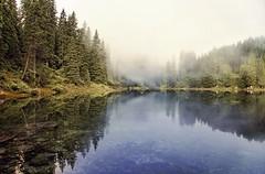 Silence rev. (ELtano86) Tags: carezza lake reflection fog forest foggy nebbia lago dolomite dolomiti dolomites dolomiten riflesso riflessi travel mist misty mistymorning