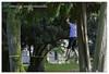 Automne - Autumn #automne #autumn #saison #season #light #ouverture #sensibilité #nature #outdoor #exterieur #birds #duck #oie #park #parc #france #livrygargan #life #photography #nikon #vitesse #vie #joie #respirer #picture #colors (duport.patrick) Tags: nikon season birds outdoor sensibilité oie livrygargan life light france nature duck joie exterieur picture autumn saison photography respirer vitesse automne park vie colors ouverture parc