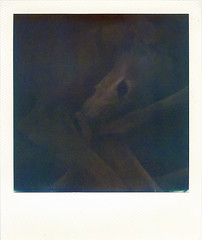 chai .. (bunchadogs & susan [off for a bit]) Tags: chaithesmoothsaluki lowlight polaroidi1 withpolaroidimpossiblecolorfilm fortunacalifornia littledoglaughednoiret