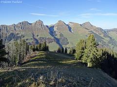 SF_DSC00191 - Panorama sur les Vanils ; de gauche à droite, le Vanil d'Orseire, le Vanil d'Arpille, le Gros-Brun, la Combiflue, le Choerblispitz. (Valentin Vuichard) Tags: valentin vuichard valentinvuichard vv gruyère greyerz fribourg freiburg suisse schweiz switzerland préalpes alps alpen berg bergen montagne montagnes prealps voralp freiburger voralpen fribourgeoises canon eos 7d digital efs agriculture mountain rural patrimoine