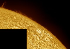 Sun in H-alpha on October 7 2017 psp color (Photon_chaser) Tags: sun prominences protuberance protuberances prominence alpha achromat asi andover astrophotos anover25mmblackingfiltermountedinthenosepieceoftelevue4xpowermatetelecentric quark zwo zwoasi174mmcamera etalon 3d 3dprintedtubeassembly 3dprintedtube erf lunt ls50f baader baader110mmderf