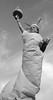 Remake 4eme (APGalerie) Tags: statue de la liberté affaire strauss kahn einstein ben laden zidane man ray chaplin pirate des caraïbes marilye monroe cheguevara robertcapa affairedsk manray piratedescaraïbes lajoconde banania marilynmonroe