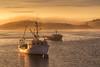 Foggy sunset (Oleg S .) Tags: usa sunset water bay lubec boat fog maine flickr vehicle