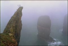 a little closer (steve-jack) Tags: nikon f5 35mm kodak ektar film 135 bellinifoto monopart epson v500 c41 wales pembrokeshire elegug stacks mist fog sea rocks