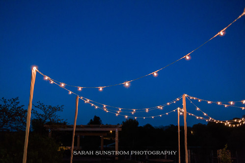 """Outdoor String Lighting at Cedar Ridge Winery by Unique Events • <a style=""""font-size:0.8em;"""" href=""""http://www.flickr.com/photos/81396050@N06/37088425983/"""" target=""""_blank"""">View on Flickr</a>"""