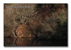 Vallon du stangalard 2017 - Le héron cendré (porte-plume) Tags: stangalard stangalar brest