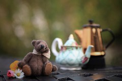 coffee, tea .... or me? (s@ssyl@ssy) Tags: tuck teddy tiny small teapot vintage coffeepot stilllife tabletop outdoors patio garden tinyteapot tinycoffeepot