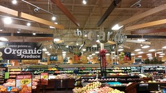the garden, of course (Retail Retell) Tags: horn lake ms kroger desoto county retail former seessels albertsons schnucks 2000 grocery palace acme theme park corrugated metal 2012 bountiful décor remodel