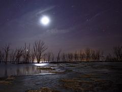 Empty field (karinavera) Tags: longexposure night photography ilcea7m2 moon buenosaires alone epecuen empty argentina moonlight abandoned sky field stars