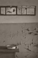 _MG_6446 (daniel.p.dezso) Tags: kiskunmajsa laktanya orosz kiskunmajsai former soviet barrack elhagyatott urbex abandon ruin building majsai