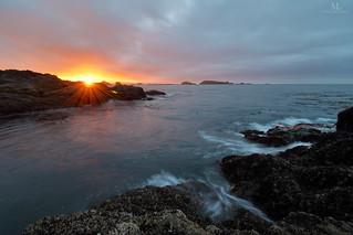 Amphitrite Point at sunrise