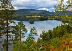 Early Autumn Lake (bjorbrei) Tags: water lake sea shore trees forest pines hills reflections autumn maridalen maridalsvannet oslo norway