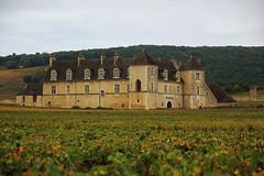 le clos vougeot (Bourgogne) (pileath) Tags: vinevineyards goldpurpleorpourprebâtiment castle château bâtiment viticole winey automne autumn