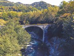 The Bridge (moaan) Tags: kamishihorocho hokkaido japan jp bridge railway discontinuedrailway woods forest nature river decline desolate travel travelphotography iphone iphone5 iphoegraphy utata 2017