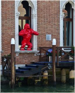Das Ungeheuer vom Canal Grande * The Canal Grande monster * El monstruo del Canal Grande *   . P1360322-001