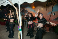 "Sisters of Tribellica dance at Diversity Fest 2017 (Tim Dennell) Tags: sistersoftribellica dance sheffield bellydance diversity arts ""performingarts"" music poetry books authors poets singers dancers people lgbt cultures multicultural ""hagglerscorner"" queens road october 2017"