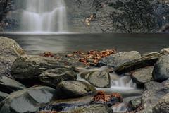 moss glen falls tight in autumn I - granville, vt (laughlinc) Tags: unanimouswinner longexposure moss nikon vermont nature nikon7200 105mm28 mossglenfalls leaves granville rocks