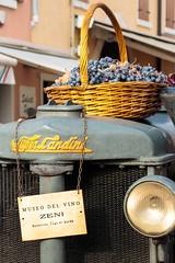 Inebriante nettare (Andrea Giglioli) Tags: bardolino festadelvino lungolago lagodigarda festa sagra natura campagna italy wine motori canon eos