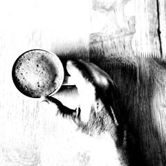 Saturday Morning (CJS*64) Tags: nikon nikon1 nikonj1 nikonj5 nikkor cjs64 craigsunter cjs blackwhite bw blackandwhite whiteblack whiteandblack mono manchester hand morning coffee saturday