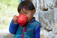 Nepalese Child (Kramskorner) Tags: mount everest base camp 2017 katmandu mountains himalayas pumori ama dablam snow capped peaks summit trek trekking hiking high altitude sony a7ii 24240mm landscape sunrise bw coffee tea child drink