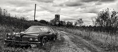 take the open road... (BillsExplorations) Tags: granprix pontiac car automobile forsale abandonedcar rust openroad darkroad blackandwhite monchromemonday monchrome ruraldecay decay forgotten neglected discarded abandonedillinois old vintage
