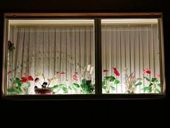 """German """"Gemütlichkeit"""" (Berliner1963) Tags: cosy gemütlich light licht curtain gardinen flowers blumen window fenster friedenau berlin germany deutschland"""