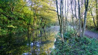 Bardsley Canal