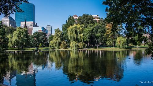 2017 - Boston - Public Garden Pond