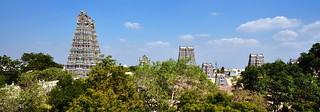 India - Tamil Nadu - Madurai - Meenakshi Amman Temple - Overview - 1d