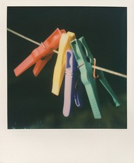 untitled (Djuno Tomsni) Tags: polaroid instant film photography analogue impossiblefilm sx70 colorful djunotomsni