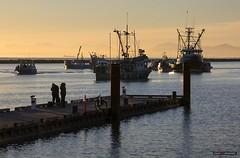 Fishing Off The Dock (Clayton Perry Photoworks) Tags: vancouver bc canada richmond steveston autumn fall explorebc explorecanada fishing boat dock people sunset fraserriver