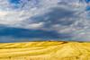 Vacances_5250 (Joanbrebo) Tags: sepúlveda castillayleón españa es antoniomachado camposdecastilla segovia nubes nuvols nuages clouds nature naturaleza natura landscape canoneos80d eosd efs1855mmf3556isstm autofocus saariysqualitypictures